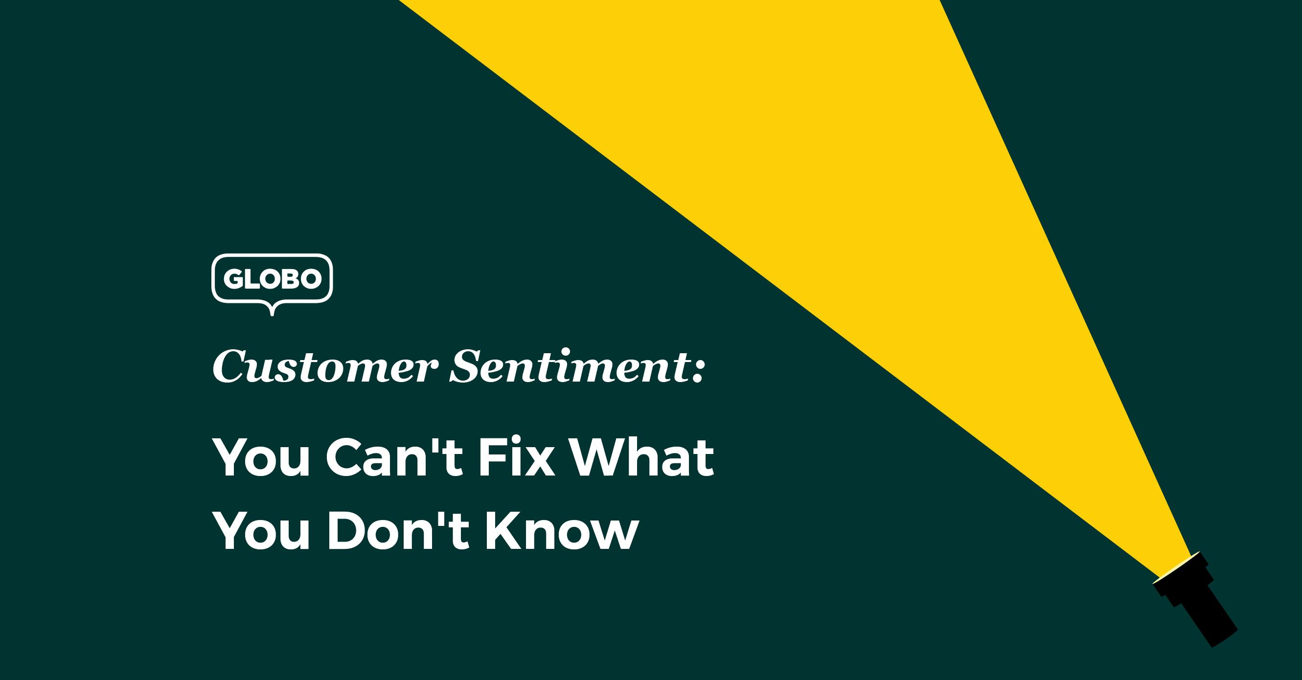 Customer Sentiment Language Support